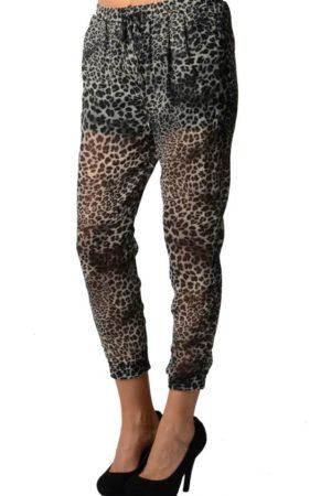 Grey Leopard Print Chiffon Harem Pants